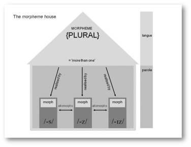 2010_pflaeging_morpheme house